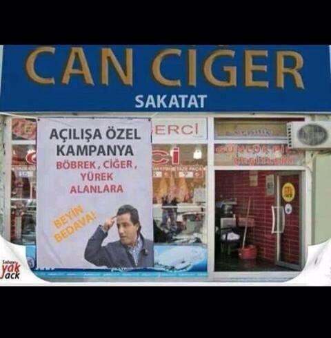 canciger-beyin