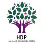 HDP (1)